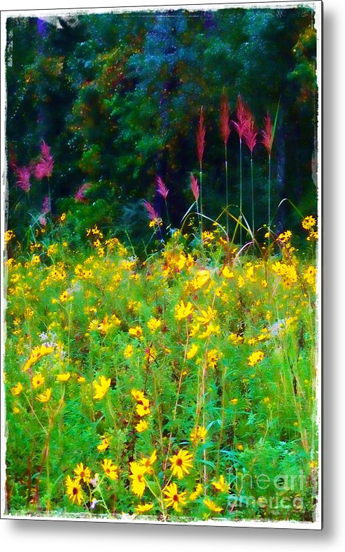 Sunflowers Metal Print featuring the photograph Sunflowers And Grasses by Judi Bagwell
