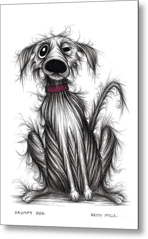 Grumpy Dog Metal Print featuring the drawing Grumpy Dog by Keith Mills