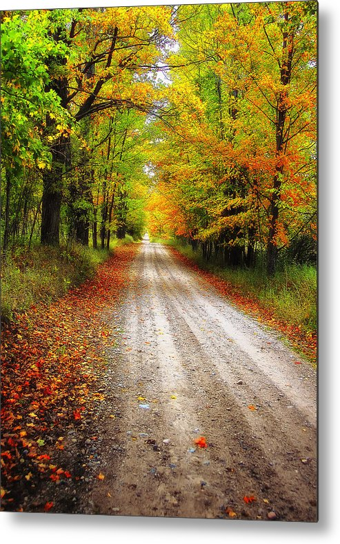 Woods Metal Print featuring the photograph Autumn Road by Peg Runyan