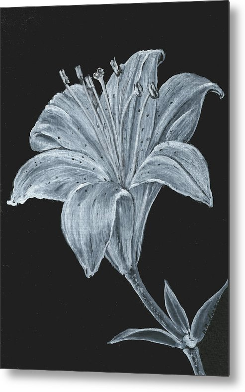 Lily Metal Print featuring the painting Black And White Asiatic Lily by Richard Bulman