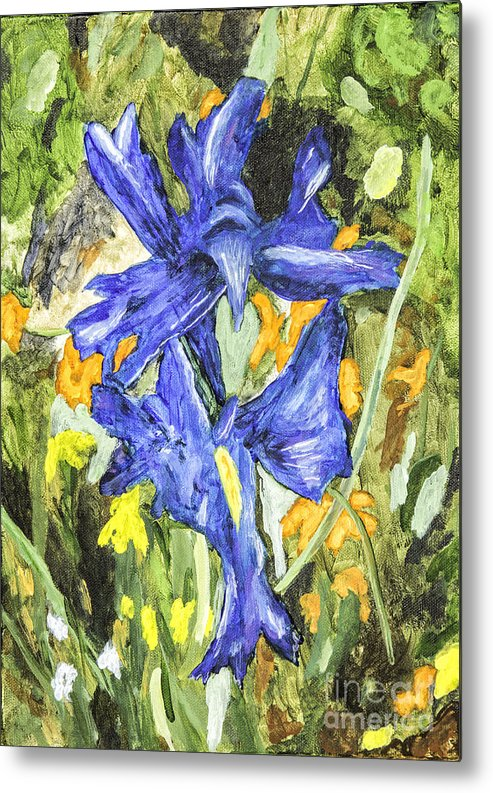 Acrylic Paintings Metal Print featuring the painting Blue Iris Painting by Timothy Hacker