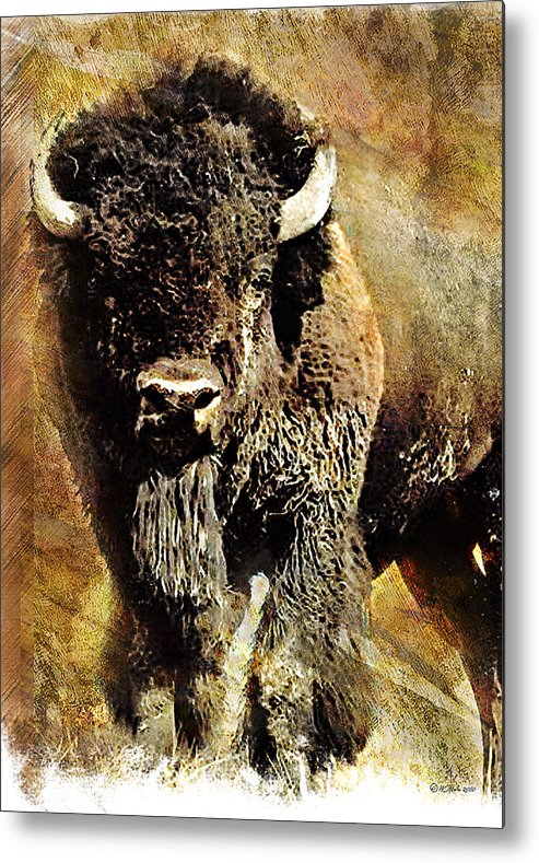 Buffalo Metal Print featuring the painting Buffalo Poster by William Martin