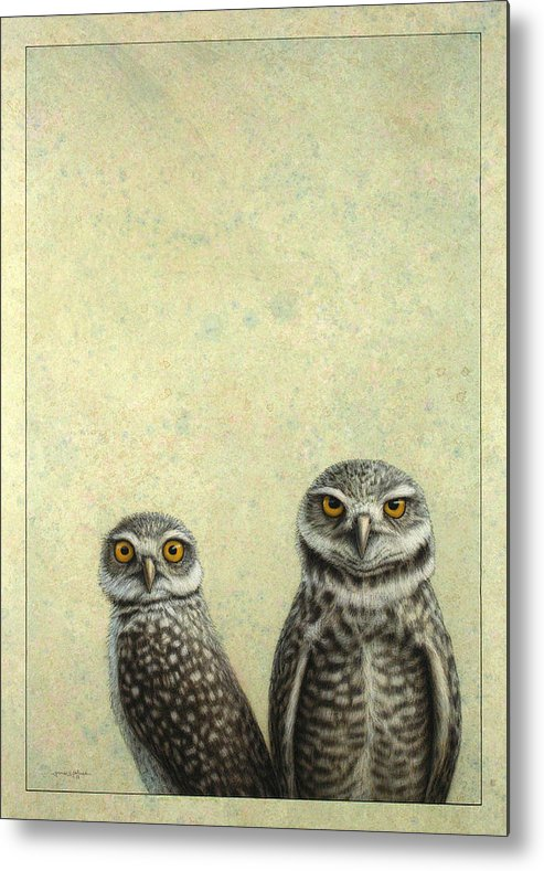 Owls Metal Print featuring the painting Burrowing Owls by James W Johnson