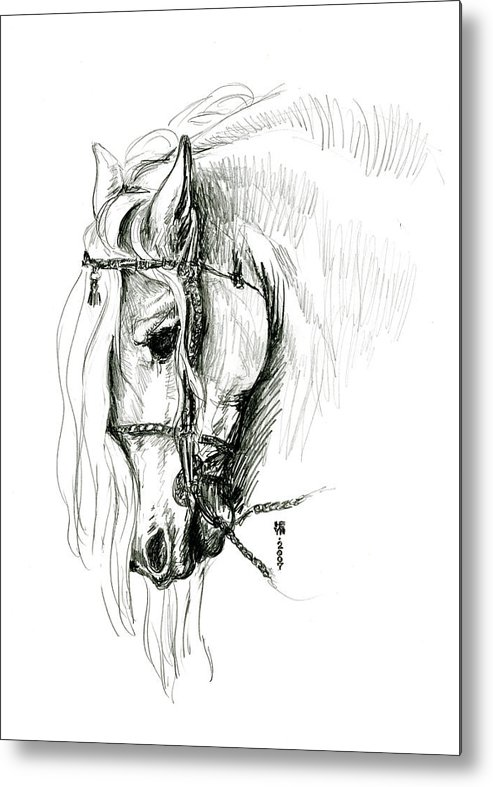 Domestic Metal Print featuring the drawing Chomping At Bit - Sketch1 by Shirley Heyn