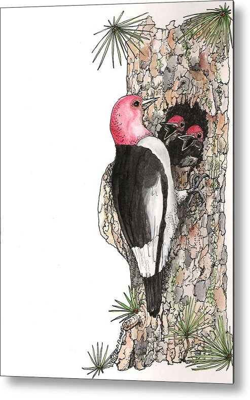 Bird Metal Print featuring the drawing Dinner Time by Terri Kilpatrick