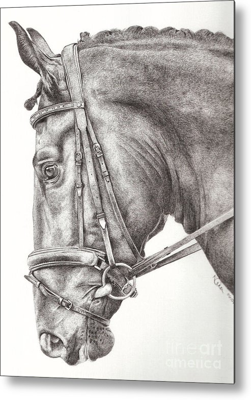 Horse Metal Print featuring the drawing Dobbin by Karen Townsend