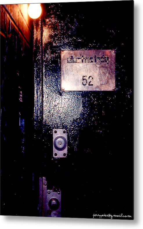 Door Metal Print featuring the photograph Electric Lady 52 by Gerard Yates