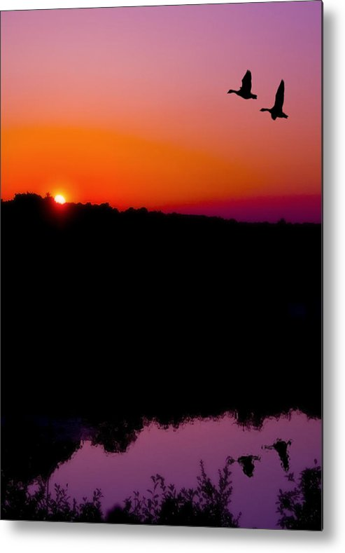 Sunset Metal Print featuring the photograph Heading Home by Kenneth Krolikowski