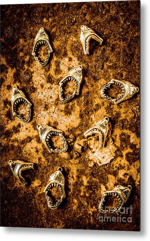 Shark Metal Print featuring the photograph Killer Shark Jaws by Jorgo Photography - Wall Art Gallery