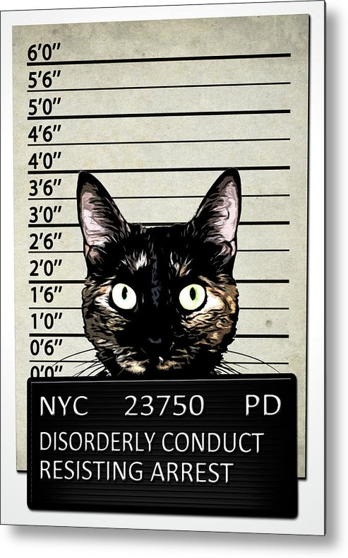 Cat Metal Print featuring the mixed media Kitty Mugshot by Nicklas Gustafsson
