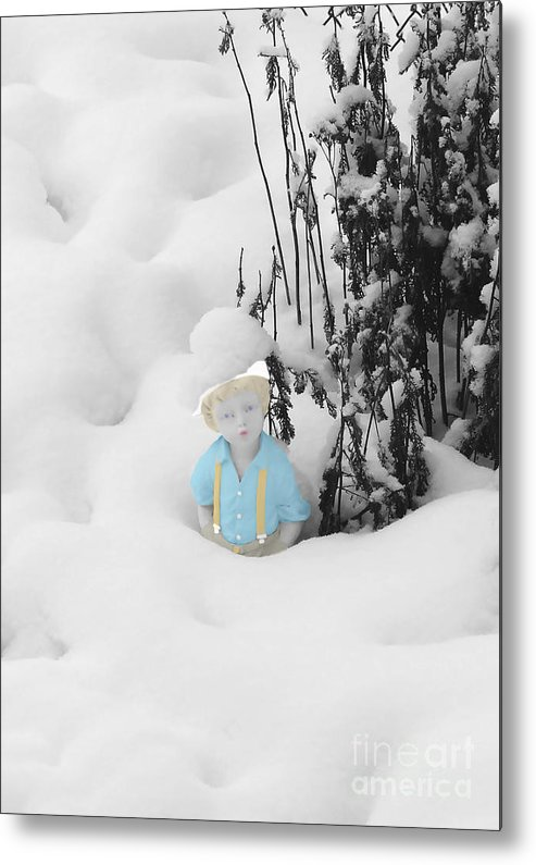 Garden Metal Print featuring the photograph Let It Snow by Al Bourassa