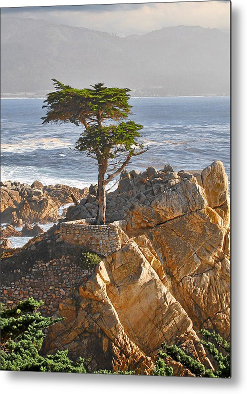 Pine Metal Print featuring the photograph Lone Cypress - The Icon Of Pebble Beach California by Christine Till