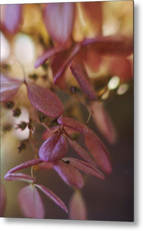 Flowers Metal Print featuring the photograph Romance by Arthur Miller