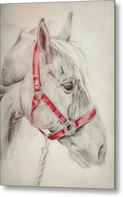 Horse Metal Print featuring the photograph Tequila Sketch by JAMART Photography