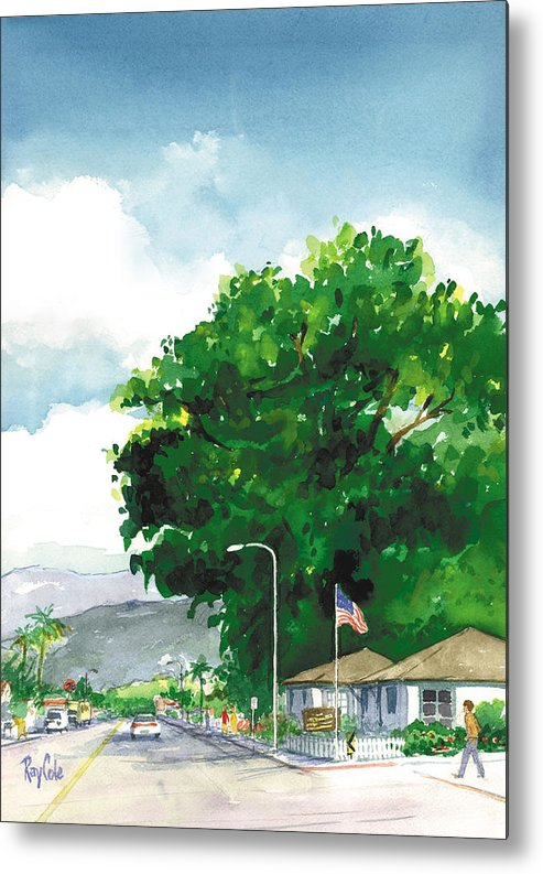 Historic Landmark Metal Print featuring the painting Torrey Pine by Ray Cole