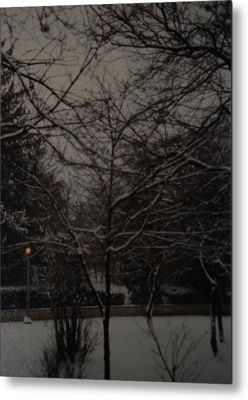 Lights Metal Print featuring the photograph Winter Dusk by Rob Hans