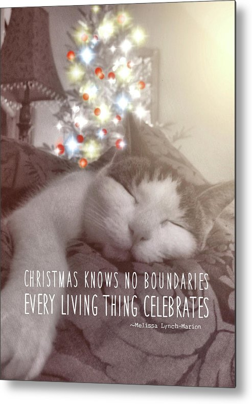 Cat Metal Print featuring the photograph Christmas Nap Quote by JAMART Photography