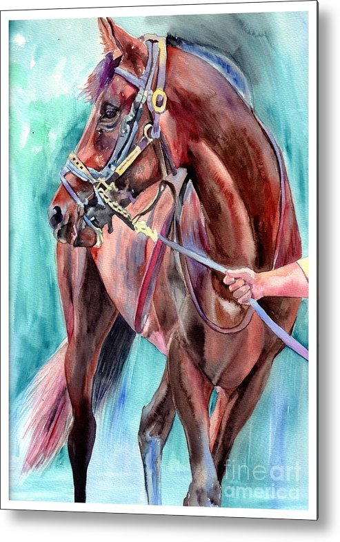 Watercolor Metal Print featuring the painting Classical Horse Portrait by Suzann Sines