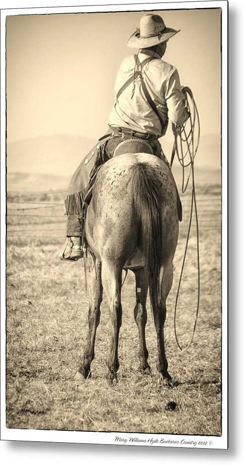 Metal Print featuring the photograph 7903 by Mary Williams Hyde