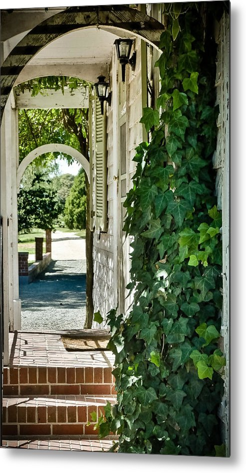 Ivy Metal Print featuring the photograph Ivy Arch by Path Joy Snyder