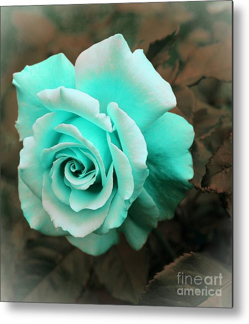 Aquamarine Rose Metal Print featuring the photograph Aquamarine Rose by Barbara Griffin