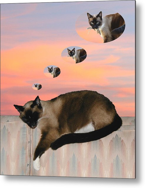 Siamese Cat Metal Print featuring the photograph My Favorite Dream - Mouse Hunt by Her Arts Desire