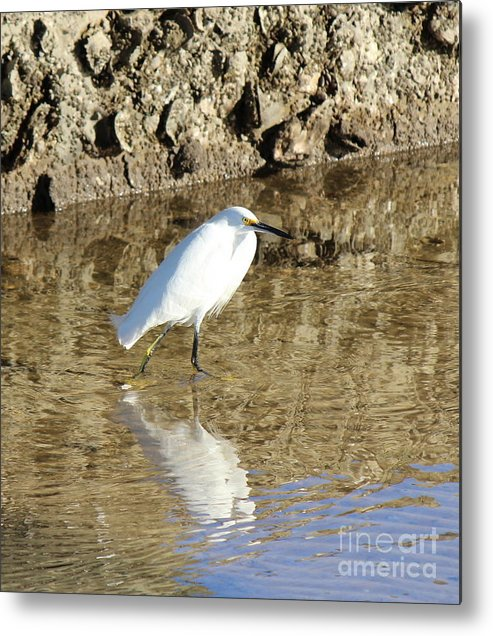 Metal Print featuring the photograph Reflection by Jessica Christensen
