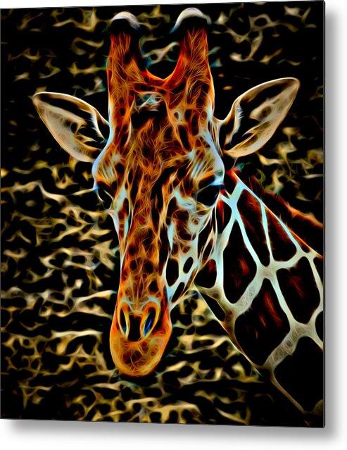 Giraffe Metal Print featuring the photograph Giraffe by David Pine