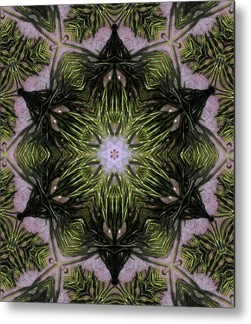 Mandala Metal Print featuring the digital art Mandala Sea Sponge by Nancy Griswold