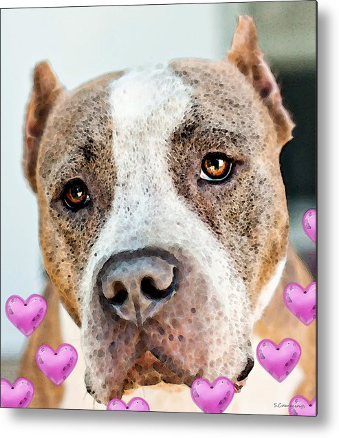 Pit Bull Metal Print featuring the painting Pit Bull Dog - Pure Love by Sharon Cummings