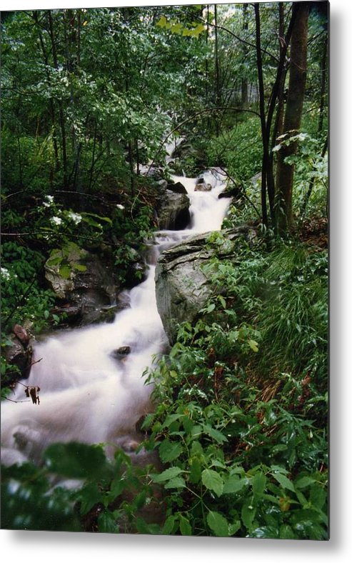 Photography Metal Print featuring the photograph Watershed Gray by Cynthia Ann Swan