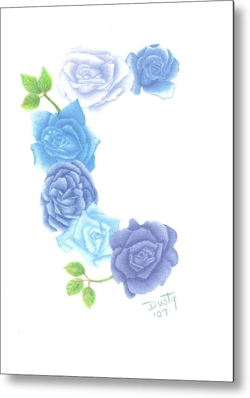 Rose Metal Print featuring the drawing Bunch Of Blues by Dusty Reed