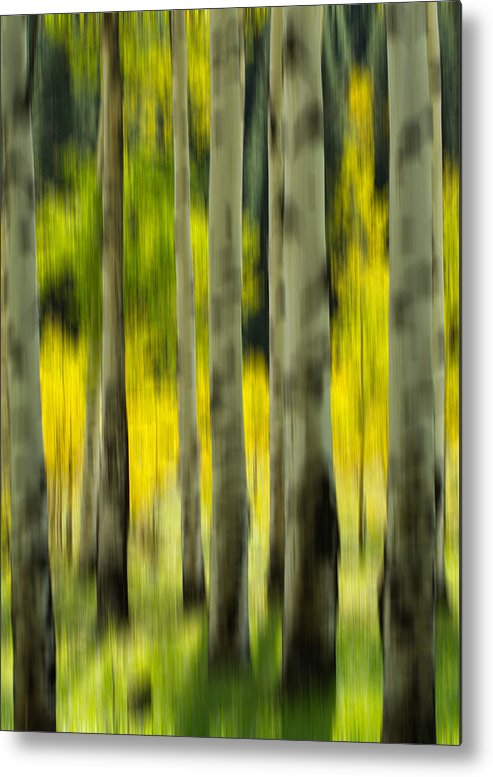 Aspen Metal Print featuring the photograph Aspen Abstract by Nathan Gingles