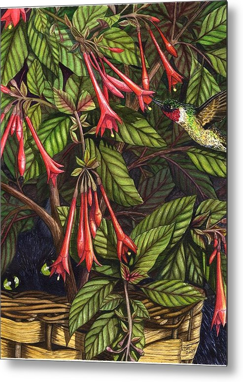 Fuchsia Metal Print featuring the painting Lurking by Catherine G McElroy