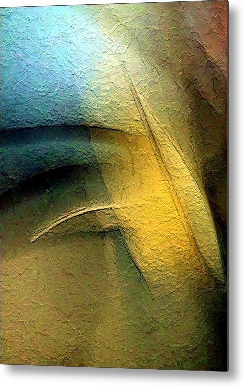Abstract Metal Print featuring the photograph Ruffed Up by Clayton Odom