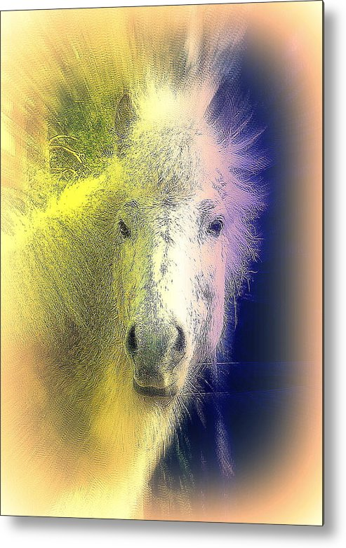 Horse Metal Print featuring the photograph how do I know if you are the one who will make me feel happy and safe by Hilde Widerberg
