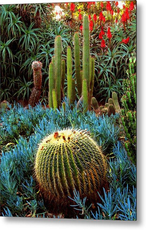 Cactus Metal Print featuring the digital art Cactus Gardens by Timothy Bulone