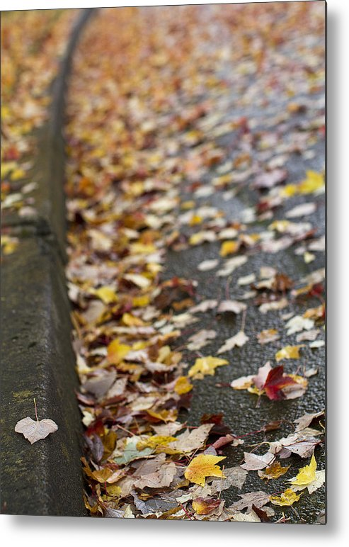 Autumn Metal Print featuring the photograph Left Behind by Rebecca Cozart