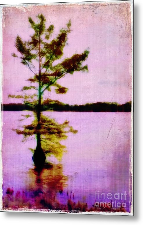 Louisiana Metal Print featuring the photograph Lone Cypress by Judi Bagwell