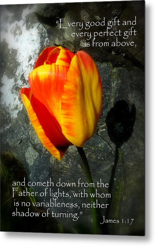 Cindy Metal Print featuring the photograph Two Tulips Shadow Scripture by Cindy Wright