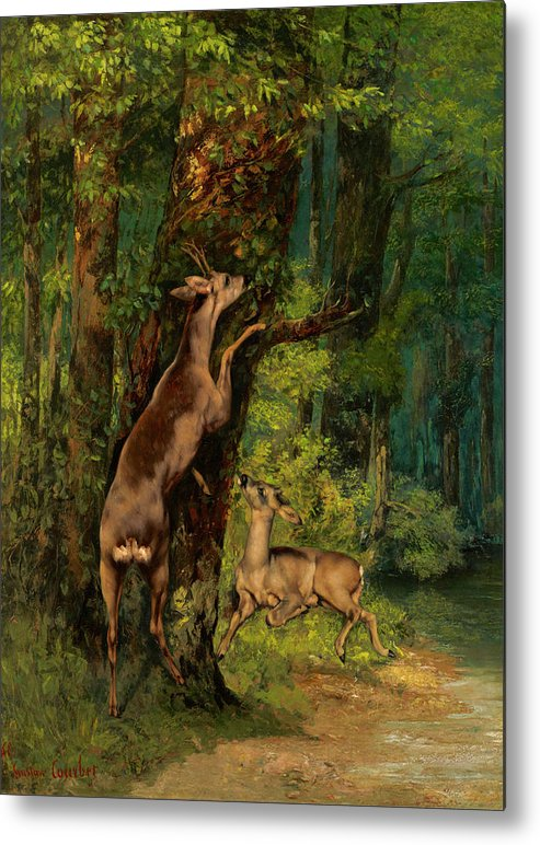 Deer In The Forest Metal Print featuring the painting Deer In The Forest, 1868 by Gustave Courbet