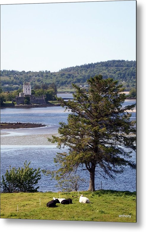 Irish Castle Metal Print featuring the photograph Doe Castle ,donegal by Anthony Gallagher