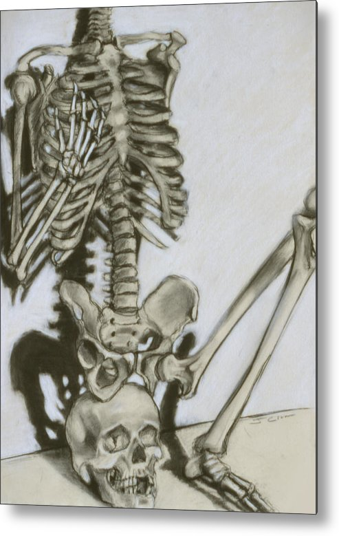Skeleton Metal Print featuring the drawing Still Life by John Clum