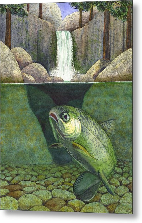 Trout Metal Print featuring the painting Water by Catherine G McElroy