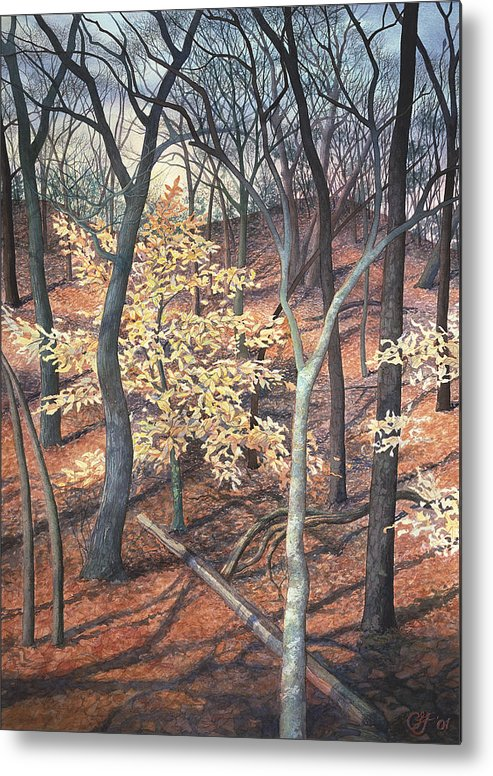 Trees Metal Print featuring the painting Winter Beech by Craig Gallaway