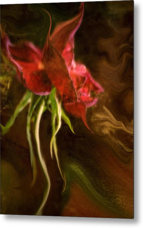 Flowers Metal Print featuring the photograph Wisdom Of Age... by Arthur Miller