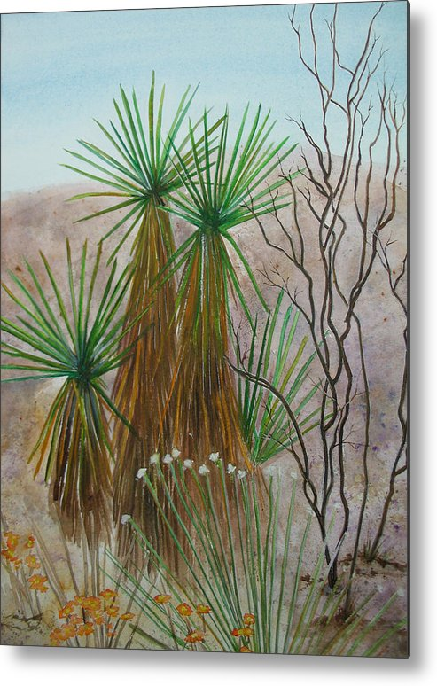 Nature Metal Print featuring the painting Yucca Stand by Myrna Salaun