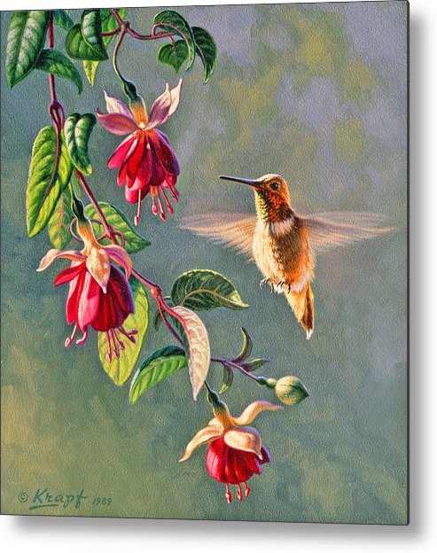 Wildlife Metal Print featuring the painting Rufous And Fuschia by Paul Krapf
