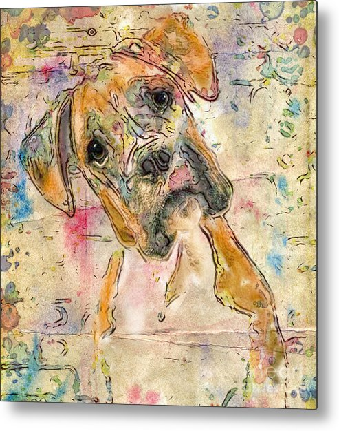Boxer Metal Print featuring the digital art Boxer Babe by Marilyn Sholin