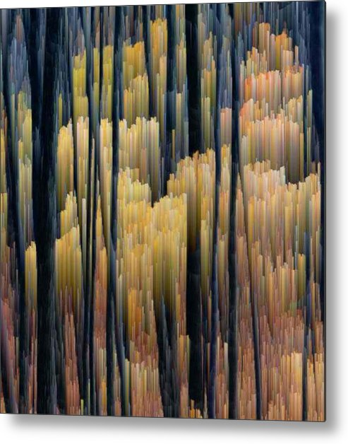 Forest Metal Print featuring the photograph Tall Forest 2 by Lyle Crump